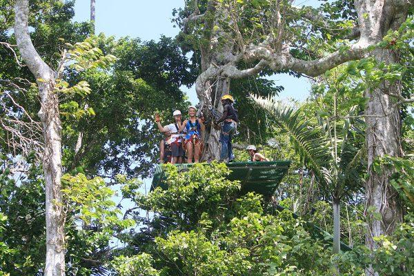 Vanuatu-Activities-Jungle-zipline